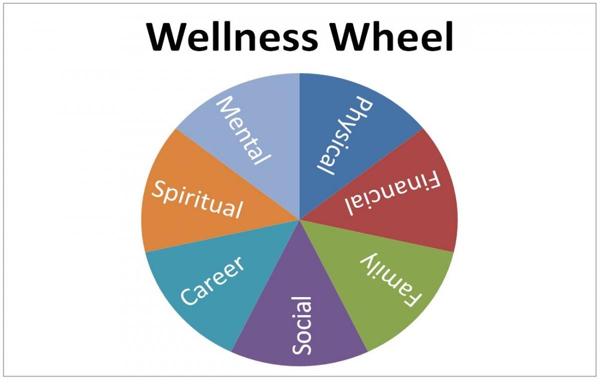 Focusing on the Wellness Wheel » Strive 2 Survive | Brown ...